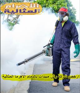 شركة رش مبيدات بالدمام