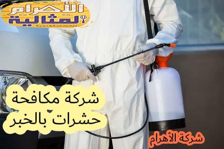 Photo of شركة مكافحة حشرات بالخبر 0501176189  القضاء التام على الحشرات